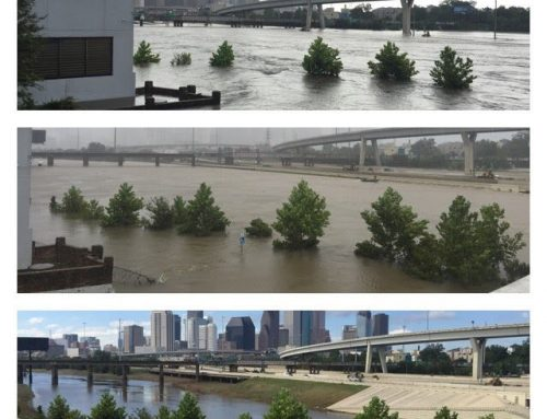 Updates from your City of Houston