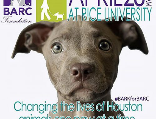 SAVE the DATE – 3rd Annual BARK for BARC Walk – April 28, 2018