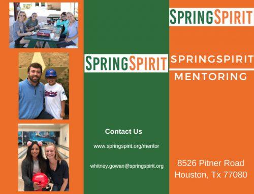 SpringSpirit Mentoring