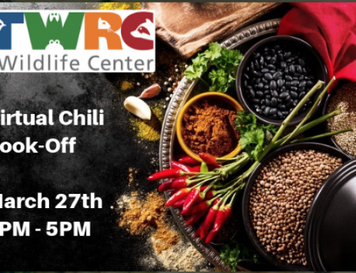 Join TWRC Wildlife Center's Virtual Chili Cook-off, March 27